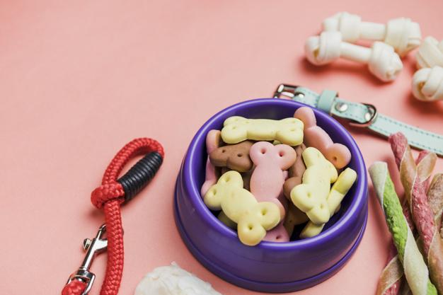 zdrava hrana za pse